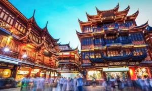 上海文史教師